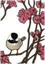 Chickadee in Quince